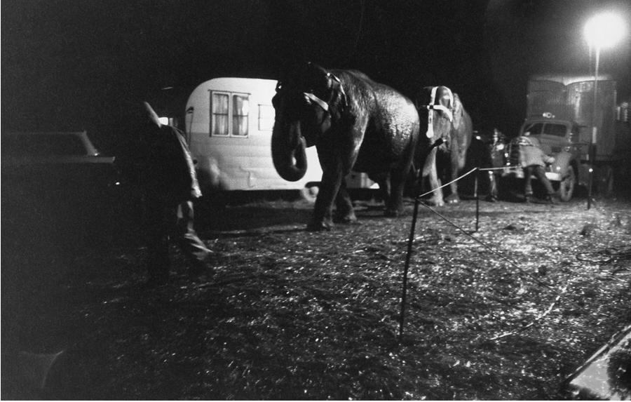 Bruce Davidson - Circus